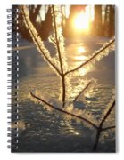 Frosty Branches At Sunrise Spiral Notebook