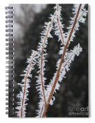 Frosty Branches Spiral Notebook