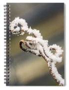 Frosty Curlique With A Twist Spiral Notebook