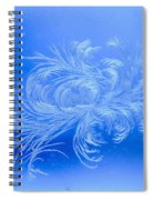 Frosty Flower Spiral Notebook