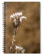Frosty Flower Remains Spiral Notebook