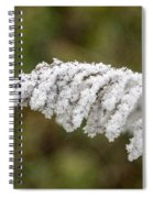 Frosty Frond Spiral Notebook