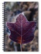 Frosty Lighted Leaf Spiral Notebook