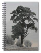 Frosty Morning 2 Spiral Notebook