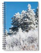 Frosty Mountainside Spiral Notebook