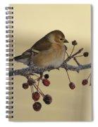 Frosty Perch Spiral Notebook