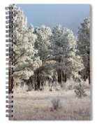 Frosty Pikes National Forest Spiral Notebook