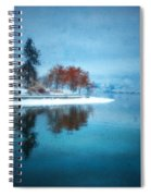 Frosty Reflection Spiral Notebook