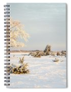 Frosty Solitude Tree In The First Morning Sunshine Spiral Notebook