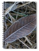Frosty Veined Leaf Spiral Notebook