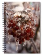 Frozen Berries Spiral Notebook