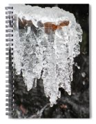 Frozen Branch Spiral Notebook