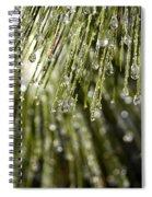 Frozen Drops Spiral Notebook