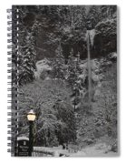 Frozen Dusk Spiral Notebook