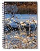 Frozen Fantasy  Spiral Notebook