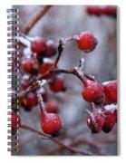 Frozen Fruit Spiral Notebook