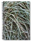 Frozen Grass - Ground Frost Spiral Notebook