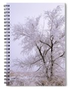 Frozen Ground Spiral Notebook