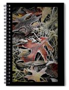 Frozen In Time Spiral Notebook