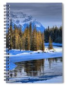 Frozen Jasper Paradise Spiral Notebook