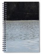 Frozen Lake 2 Spiral Notebook