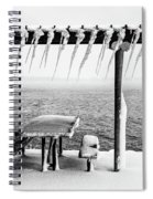 Frozen Picinic Spiral Notebook