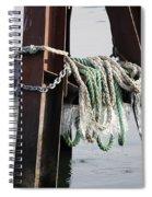 Frozen Ropes Spiral Notebook