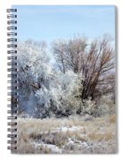 Frozen Trees By The Lake Spiral Notebook