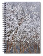 Frozen Trees During Winter Storm Spiral Notebook