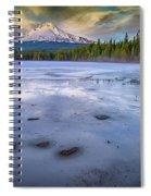 Frozen Trillium Spiral Notebook