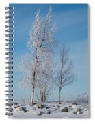Frozen Views 1 Spiral Notebook