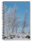 Frozen Views 2 Spiral Notebook