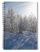 Frozen Views 3 Spiral Notebook