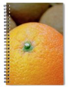 Fruit Basket. Orange. Spiral Notebook