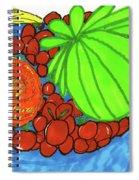 Fruit In A Blue Bowl Spiral Notebook