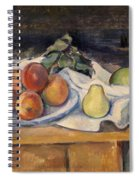 Fruit On A Table Spiral Notebook
