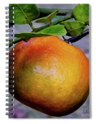 Fruit On The Tree Spiral Notebook