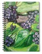 Fruit On The Vine Spiral Notebook
