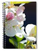 Fruit Tree Blossom Spiral Notebook