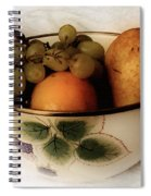 Fruitbowl Retro Spiral Notebook