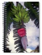 Fruitful Beauty Spiral Notebook
