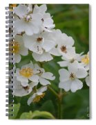 Fruity Potential  Spiral Notebook