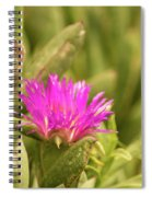 Fuchsia Bloom Spiral Notebook