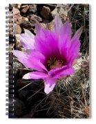 Fuchsia Cactus Blossom Spiral Notebook