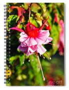 Fuchsia Enjoying The Sunshine Spiral Notebook