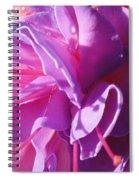 Fuchsia Frills Spiral Notebook