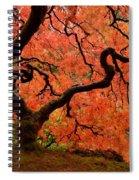 Fuego Spiral Notebook