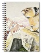 Fuertes, Louis Agassiz 1874-1927 - Burgess Animal Book For Children 1920 Pika Spiral Notebook