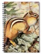 Fuertes, Louis Agassiz 1874-1927 - Burgess Animal Book For Children 1920 Striped Chipmunk Spiral Notebook