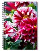Full Blooms Spiral Notebook